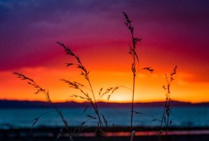 calm evening sunset